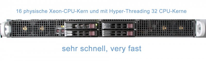 Supermicro Lightspeed Server, 32 CPU-Kerne, very fast